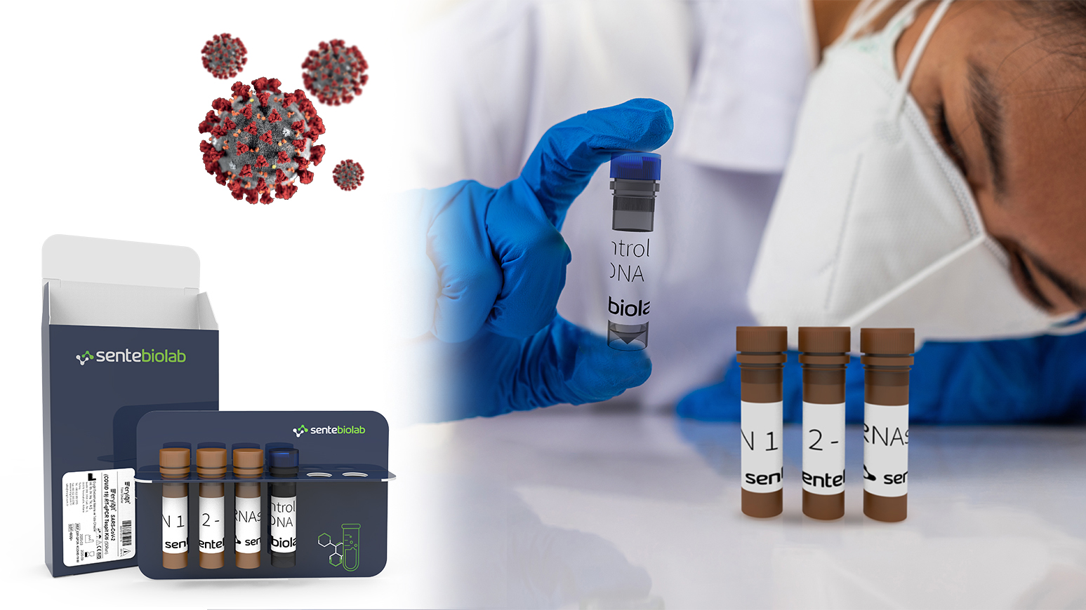 coronavirus detection kit